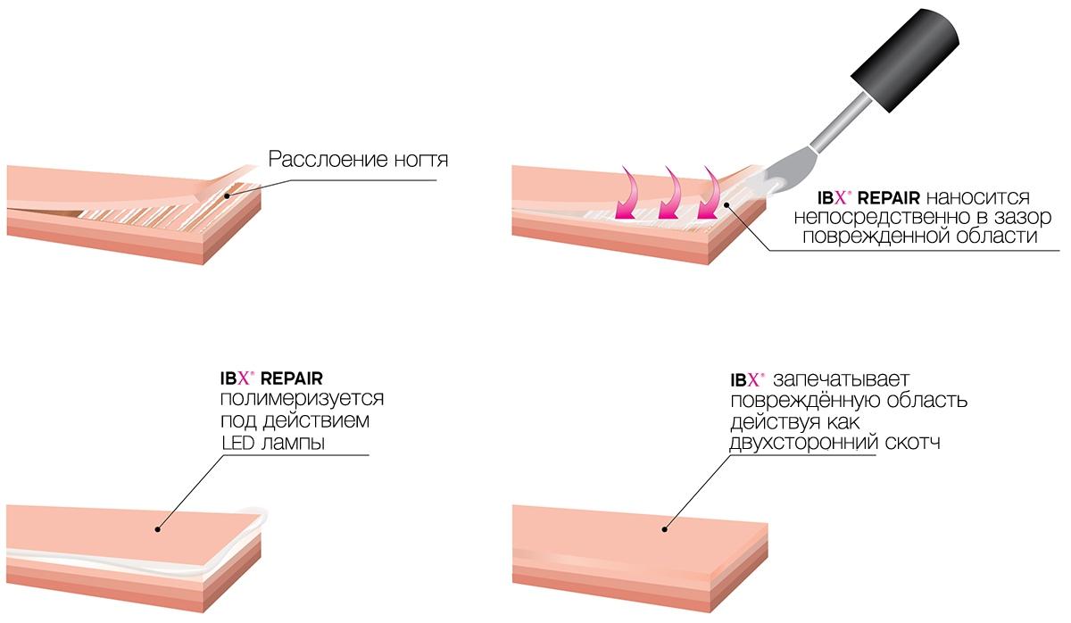 Действие IBX и IBX Repair на расслоившиеся ногти